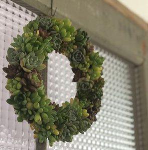 多肉植物クリスマスリース ナチュハナ